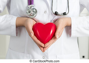 Female doctors hands holding red heart Doctors hands closeup...