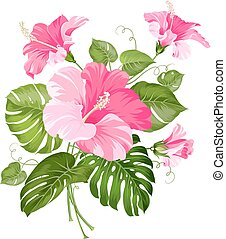 Tropical flower garland. - Tropical flower garland isolated...