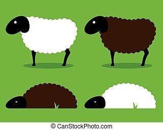 pretas, e, branca, sheep, ficar, e, dormir,