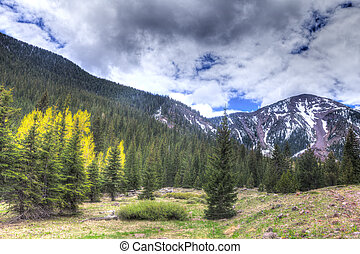 AZ-Coconino National Forest - This image was captured along...