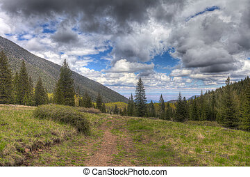 AZ-Coconino National Forest - This image was taken on the...