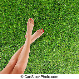 Slim female legs on grass - Perfect female legs placed above...