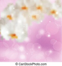 Transparent branch white orchids on a lilac background.