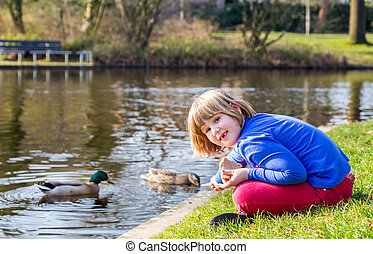 Young girl feeding ducks with bread - Young caucasian girl...