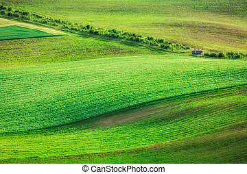 Rolling landscape of South Moravia - Rolling landscape of...