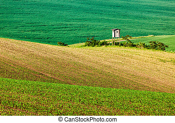 Moravian rolling landscape with hunting tower shack - Rural...