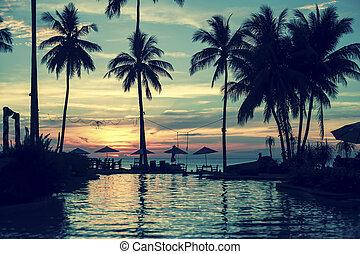ocean tropical beach