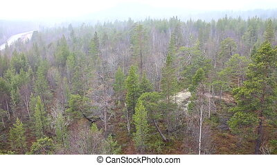 It's snowing over spring taiga 2 - Top view of taiga forest...