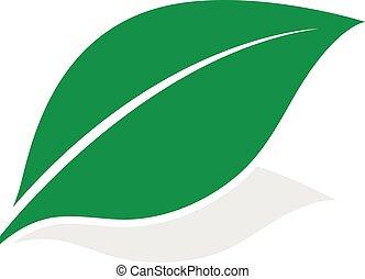 Green leaf logo with shadow - Green leaf logo at a diagonal...