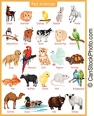 Chart of pet animals - easy to edit vector illustration of...