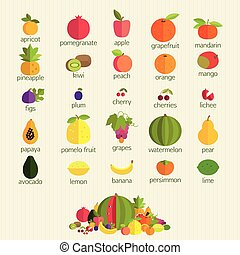 fruits with names. - Basics of healthy nutrition. The most...