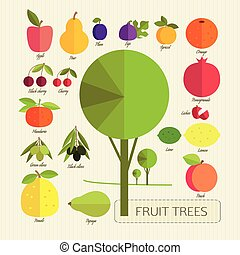 fruit trees - The fruits of fruit trees Colorful fruits and...