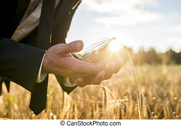 Businessman cupping a ripe ear of wheat in his hands holding...