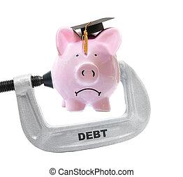 Debt piggy bank vice