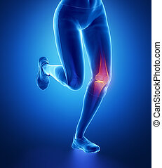 Injured knee with highlights