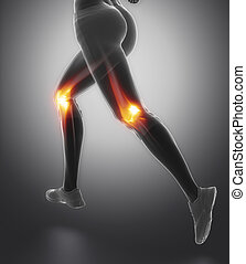 Focused on knee and meniscus in sports injuries