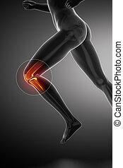 Running woman - knee anatomy