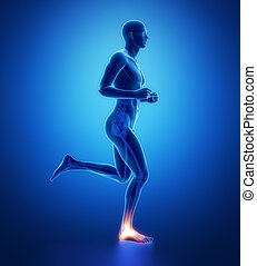 ANkle - running man leg scan in blue