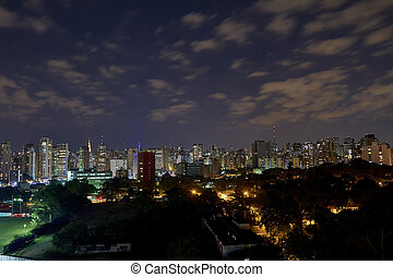 Sao Paulo city at night, Brazil, Ibirapuera Park.