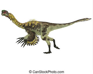 Citipati Side Profile - Citipati was a omnivorous theropod...