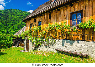 Wooden hut in traditional village, Eastern Europe - Wooden...