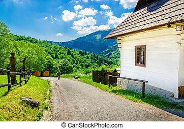 Wooden white hut in village, Eastern Europe - Wooden white...