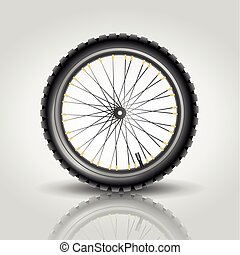 Bicycle wheel - The detailed bicycle wheel