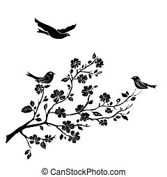 twig cherry blossoms and birds - twig sakura blossoms and...
