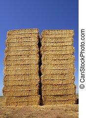 廣場, 形狀, 穀物, 堆, 欄, 穀倉