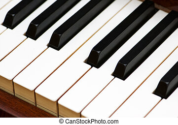 White and black keys of classical piano