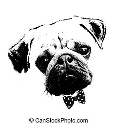 black and white graphic style pug dog - black and white...
