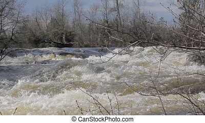 The rapid flow of the river 4 - Quick taiga river Low camera...