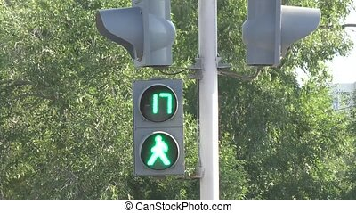 Traffic lights for pedestrians - Traffic light counting the...
