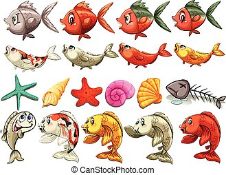 Sea creatures - Fish and other sea creatures on a white...