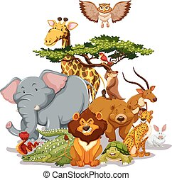 Wildlife - Group of wild animals gathering near a tree