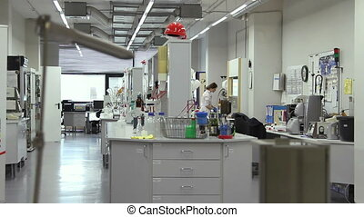 Woman working in the laboratory - Woman working in the...