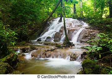 beautiful waterfall in forest