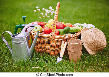 Gardening objects - Basket with fresh vegs and gardening...