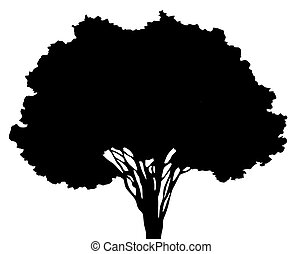tree - drawing of black tree in a white background