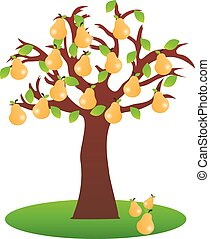 Pear tree on white background - Vector illustrated pear tree...