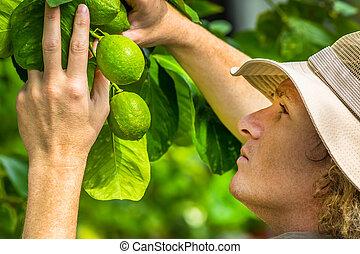 Farmer working