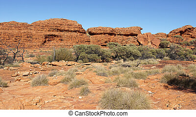 Kings Canyon, Australia - Landscape of the Kings Canyon,...