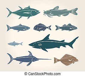 Vintage illustration of fish and seafood over white...