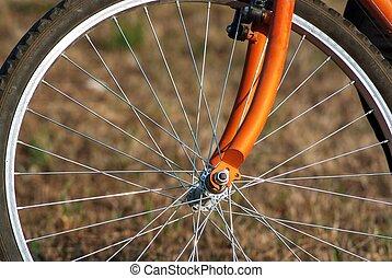 Bike wheel - Young man workout at beautiful sunny day