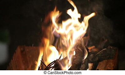 fire in the grill - The fire in the grill. Burning firewood.