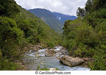 River in the Andes