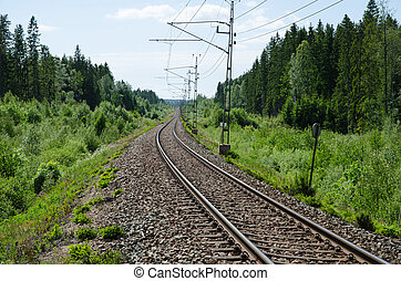 Vanishing railway tracks in a green summer landscape