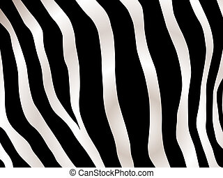 stripped zebra design - Black and white stripped zebra...