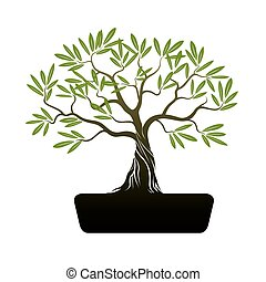 Bonsai Olive Tree. Illustration.