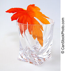 Maple leaf in a glass